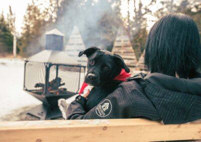 Micro chalet chien feu hiver 2019 Micro-Chalets des Appalaches